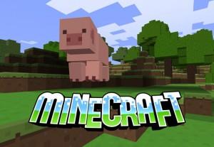 5 Minecraft