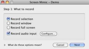 8. Screen Mimic